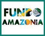 O Fundo Amazônia em detalhes (1)