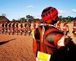 Povos indígenas do Brasil reagem aos ataques do novo governo
