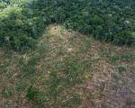 As lições ambientais que o Brasil não aprendeu põem em risco a vida dos brasileiros